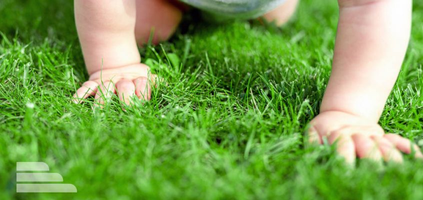 Baby crawling in green grass